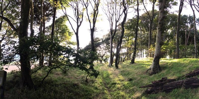 Wardlaw Hill Fort, Caerlaverock
